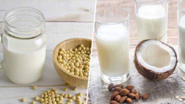 laits végétaux
