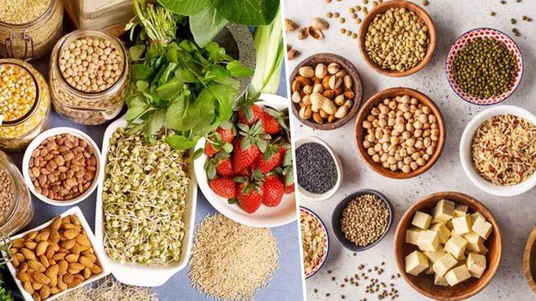Alimentation : Quelles sont les ingrédients les plus protéinés