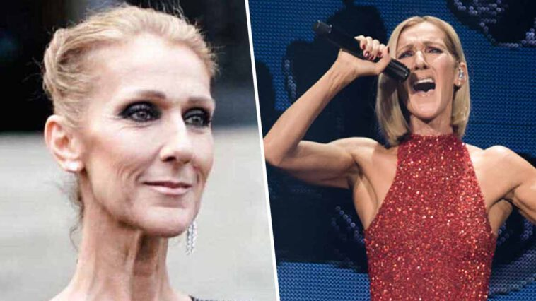 Céline Dion cette rumeur complètement folle sur la chanteuse qui fait le buzz...