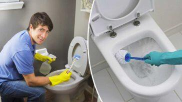 Comment blanchir le fond des toilettes, Voici les meilleurs astuces et conseils!