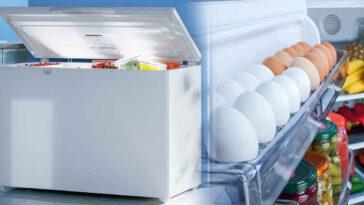 Congélateur découvrez les délais de conservation des aliments congelés