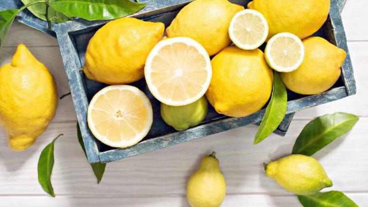 Découvrez 5 bienfaits surprenants du citron sur la santé