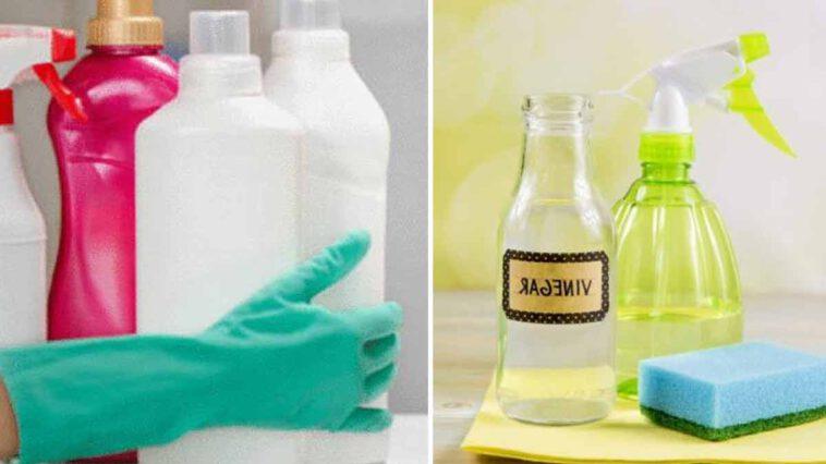 Découvrez comment bien doser le vinaigre blanc quand on fait le ménage