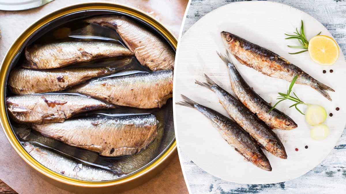 Découvrez les bienfaits de la sardine sur notre organisme