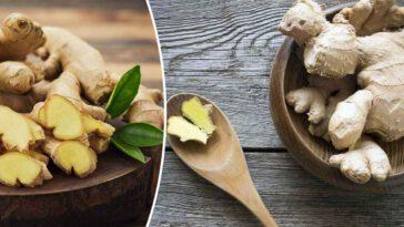 Les 6 bienfaits étonnants du gingembre