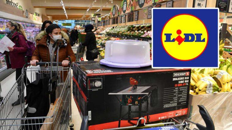 Lidl lance son nouveau robot électrique pro à seulement moins de 13 euros