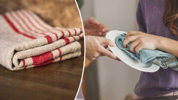 Nettoyage torchons Voici 9 astuces de grand-mère pour bien les détacher et enlever les mauvaises odeurs