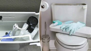 Nous oublions tous de nettoyer cet endroit des toilettes lors des tâches ménagères